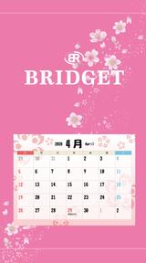カレンダー 2020年4月 SP
